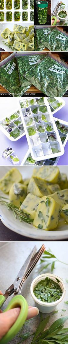 How to Freeze Fresh Herbs – Foods You Can Freeze – ALL YOU | Deals, coupons, savings, sweepstakes and more…